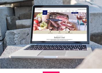 Web, Speziallösungen, Webdesign